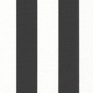black canopy fabric 420