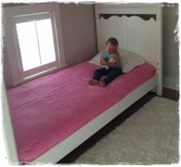 Bubble Gum Minky Bunk Bed Hugger Mary Kate